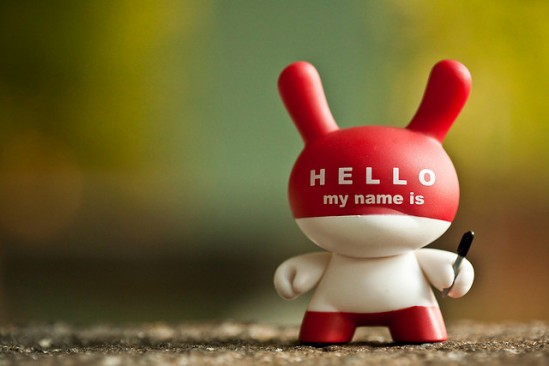 Hello My Name Is... Dunny